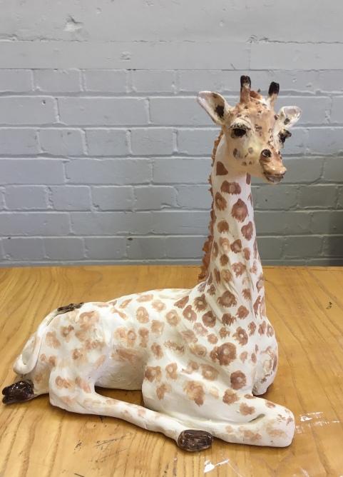 New addition sitting Giraffe